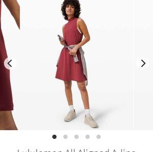 BNWT All Aligned Dress 10